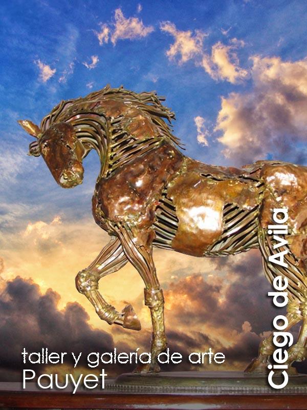 Ciego de Avila - galeria Pauyet