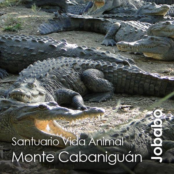 Las Tunas - Monte Cabaniguan