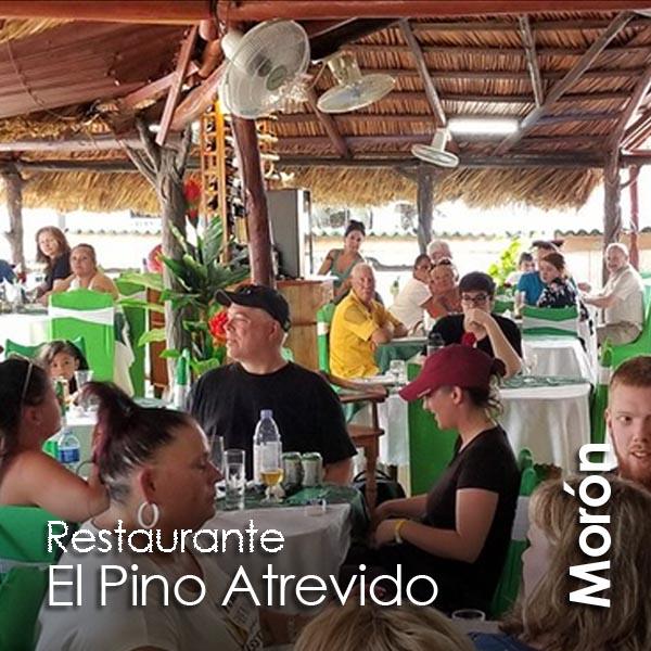 Moron - El Pino Atrevido