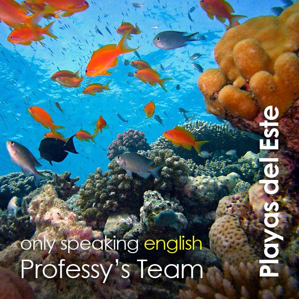 Playas del Este - Professy's Team