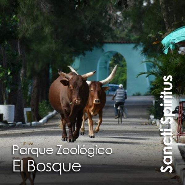 Sancti Spiritus - zoologico El Bosque